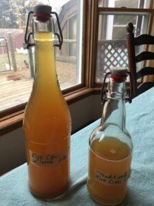 Filtered Fire Cider